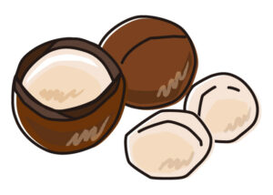 パルミトレイン酸を多く含むマカデミアナッツ